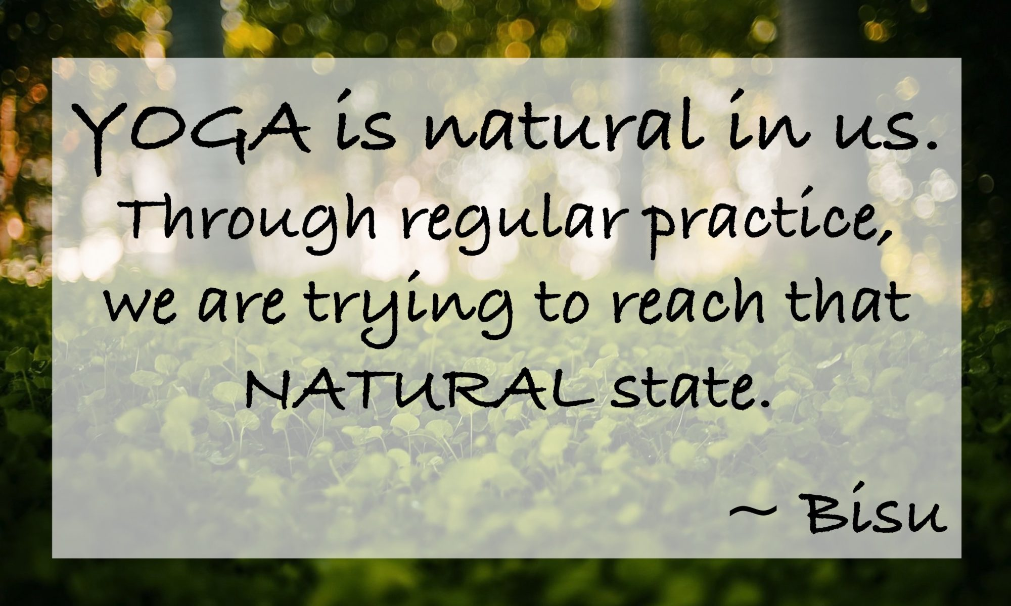 Yoga is natural in us. Through regular practice, we are trying to reach that natural state. - Bisu